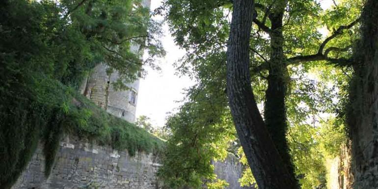 ChateauCinqMars-Douves