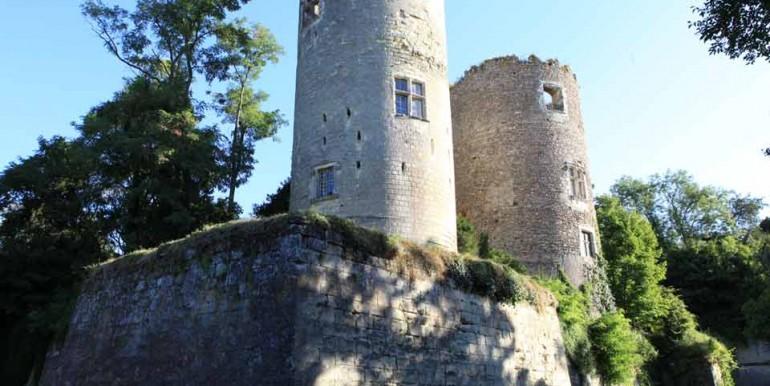 ChateauCinqMars-Douves2