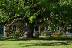 Château de Chambiers – Le Chêne