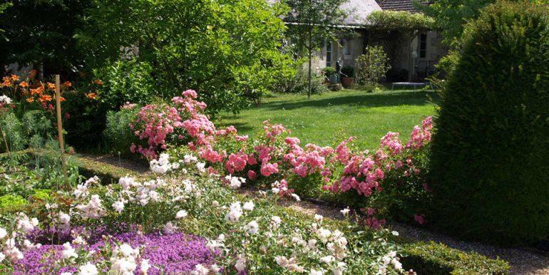 Rosa et roses