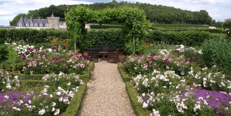 Petit Villandry-Roses et château